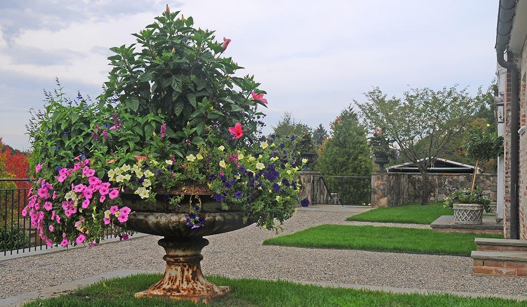 Seasonal-long-term-arrangement-7