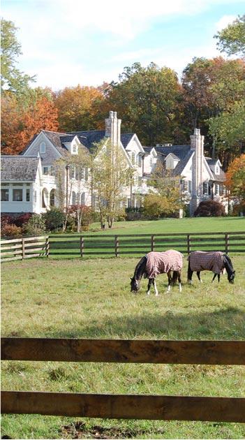 equestrian development